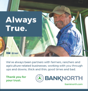 BankNorth Print Advertisement