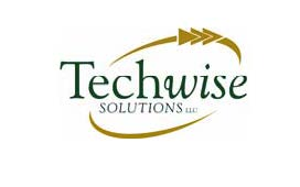 Techwise Solutions logo