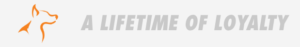 Fetch Auto rescue logo with tagline