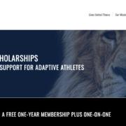 Screenshot of Lions United ROAR Scholarship webpage