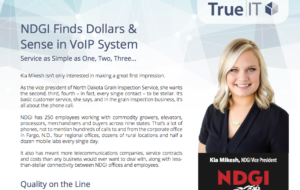 True|IT-NDGI case study tile